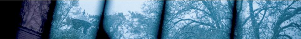 fontenay-vin-loire-vitrail-hiver_1